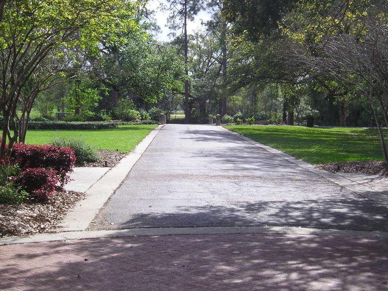 Path to the lagoon.