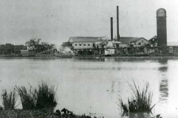 F.B. William's Cypress Lumber Mill